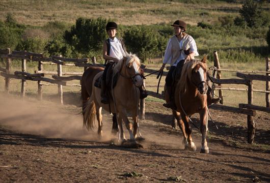 Equitazione non convenzionale